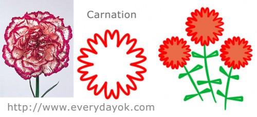 Carnation flowers scheme